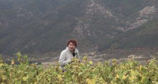 Био соя за Лаура Кьовеши