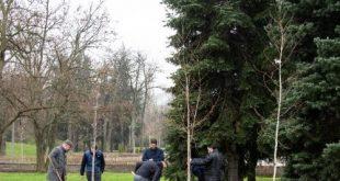 33 чинари и брези засадиха струденти и преподаватели в чест на 30-годишнината на ЮФ на УНСС