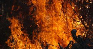 Прокуратурата започна разследване за смъртта на двамата лесничеи, загинали в пожар